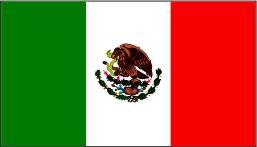 MX_flag